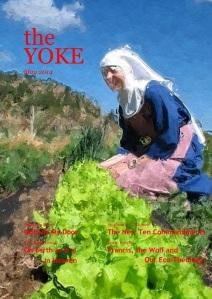May 2014 YOKE