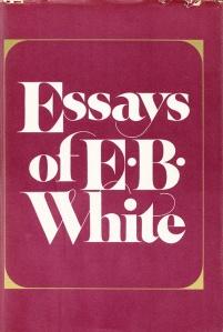 essaysofebwhite